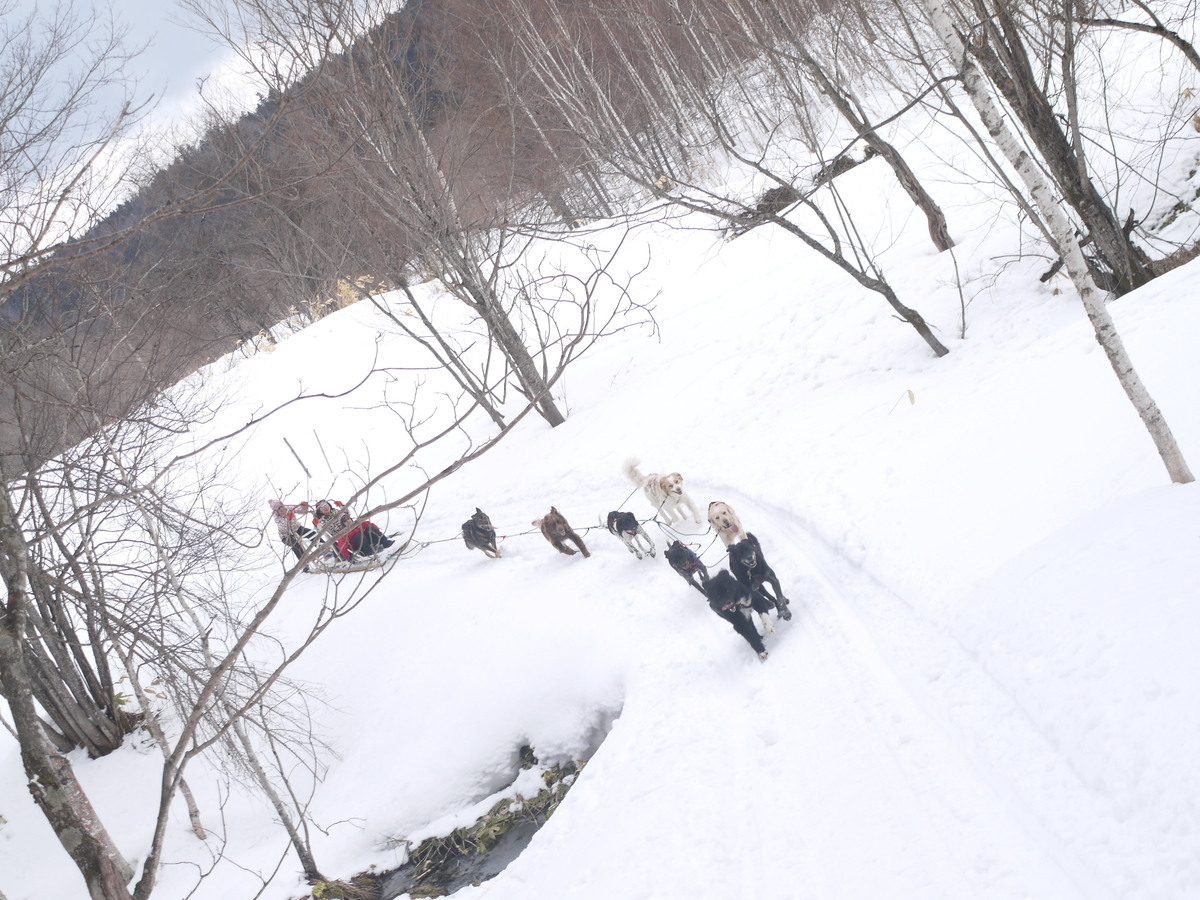 f:id:hokkaido-adventures:20190407160312j:plain