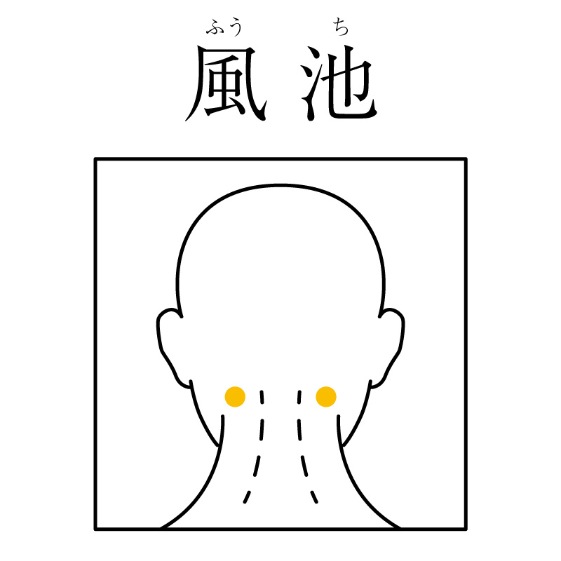 f:id:hokkaido_shinkyu:20190521161205j:plain