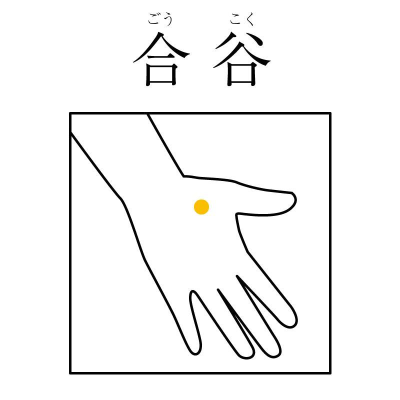 f:id:hokkaido_shinkyu:20190521161237j:plain