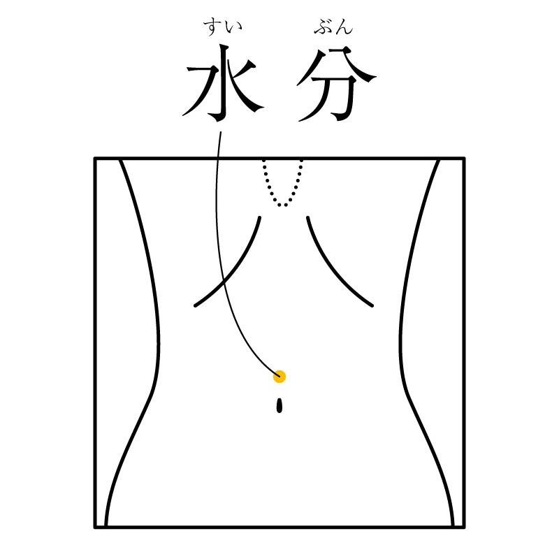 f:id:hokkaido_shinkyu:20190614185725j:plain