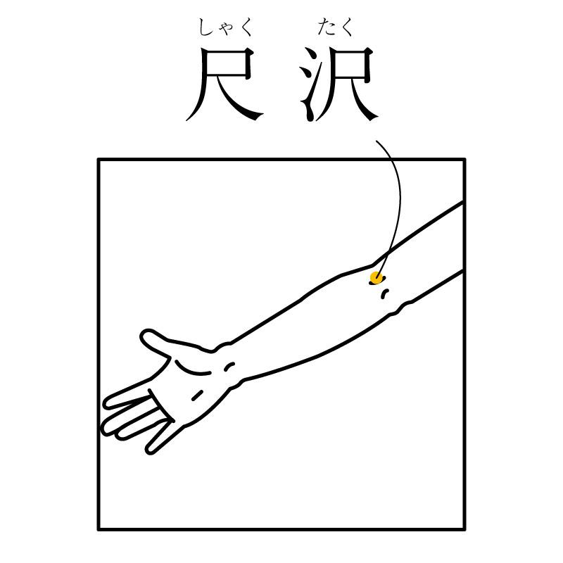f:id:hokkaido_shinkyu:20191010173919j:plain