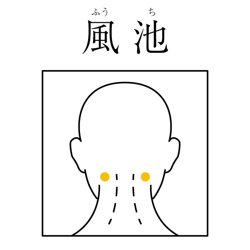 f:id:hokkaido_shinkyu:20191112181456j:plain