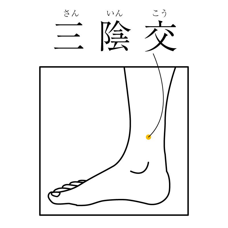 f:id:hokkaido_shinkyu:20191126183939j:plain