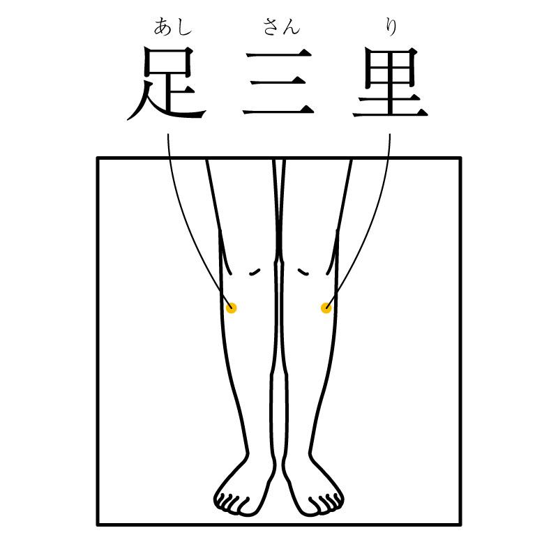f:id:hokkaido_shinkyu:20200207123236j:plain