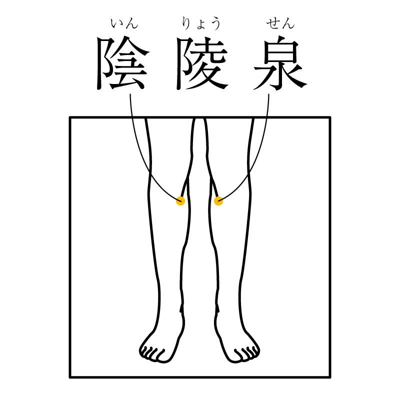f:id:hokkaido_shinkyu:20200207123300j:plain