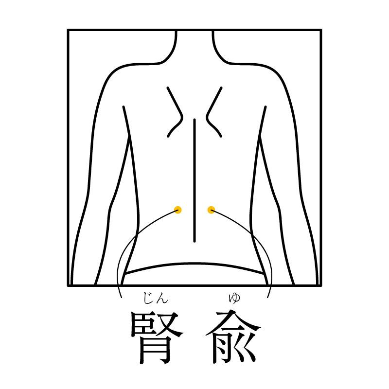 f:id:hokkaido_shinkyu:20200407183958j:plain