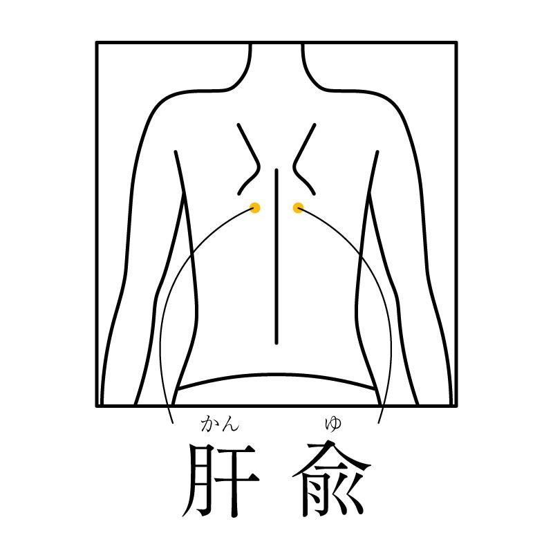 f:id:hokkaido_shinkyu:20200407184028j:plain