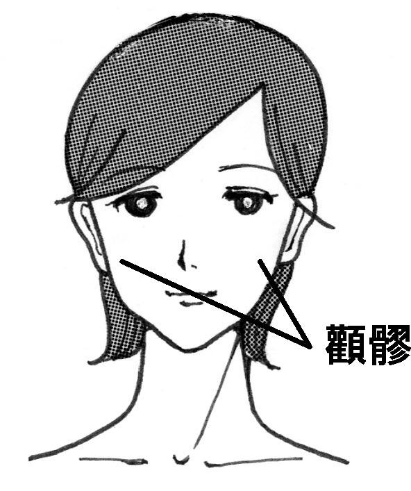 f:id:hokkaido_shinkyu:20201217141721j:plain