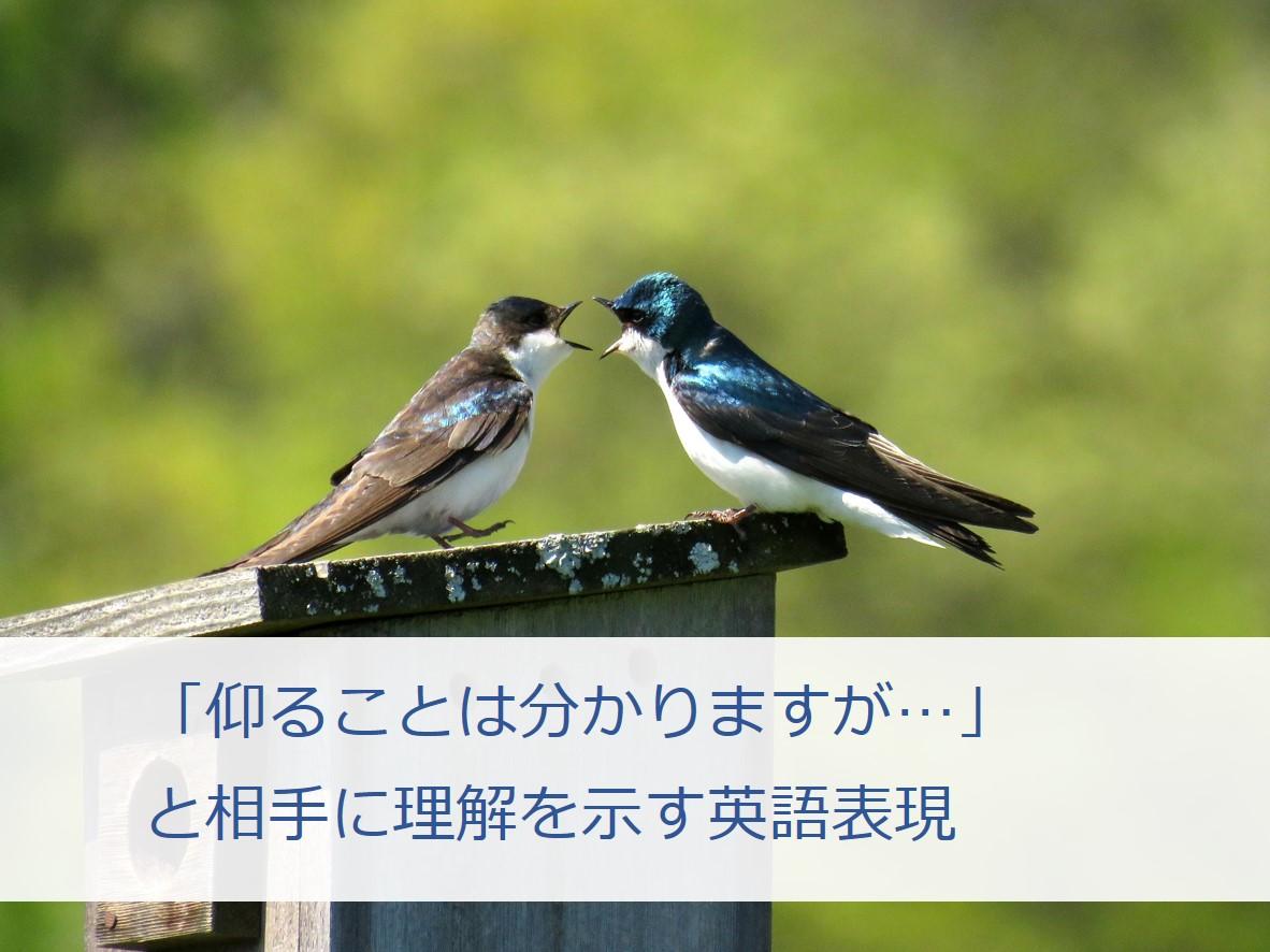 f:id:hokkaidon1118:20190415032705j:plain