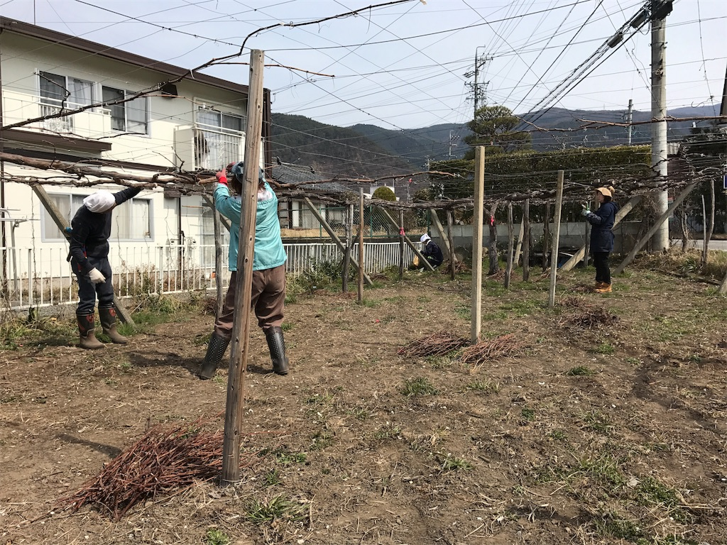 f:id:hokuhokudo77:20170318161010j:image