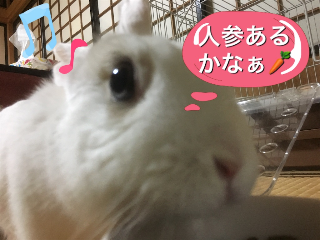 f:id:hokuhokudo77:20170412170022j:image