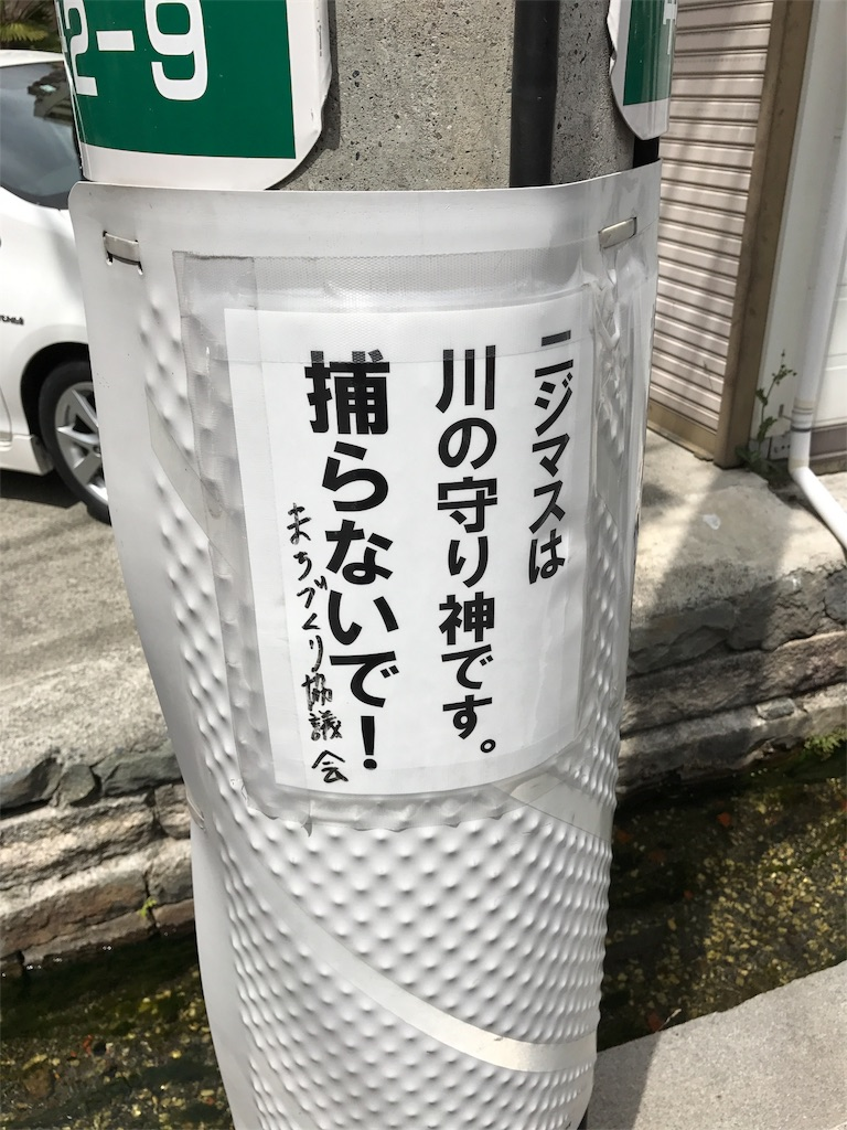 f:id:hokuhokudo77:20170506163026j:image
