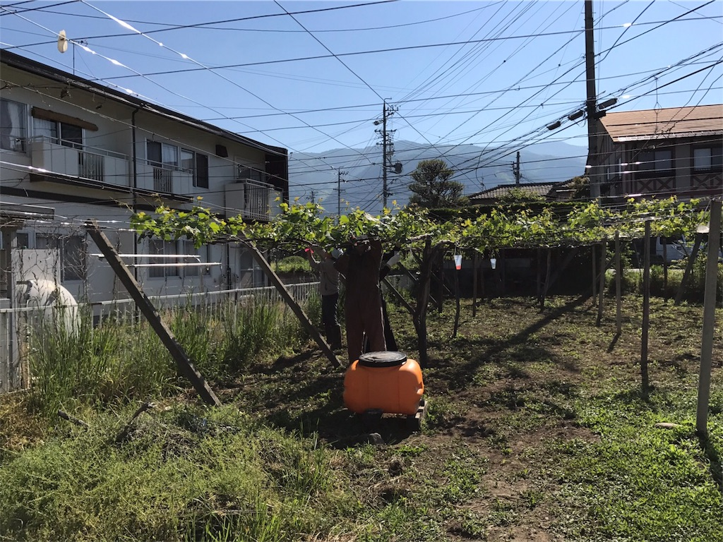 f:id:hokuhokudo77:20170525123405j:image