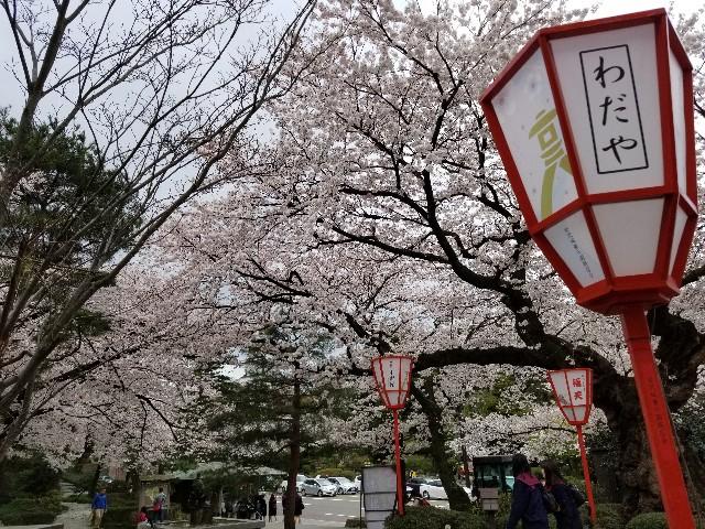 f:id:hokuriku_dodo:20190416231632j:image