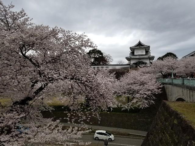 f:id:hokuriku_dodo:20190416231657j:image