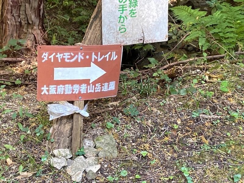 f:id:hokusetuyamazakura:20201106231345j:plain