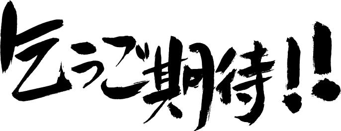 f:id:hokusho:20161222102259j:plain
