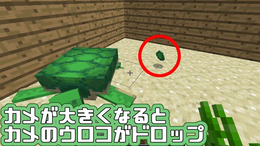 産ま 卵 ない 亀 マイクラ
