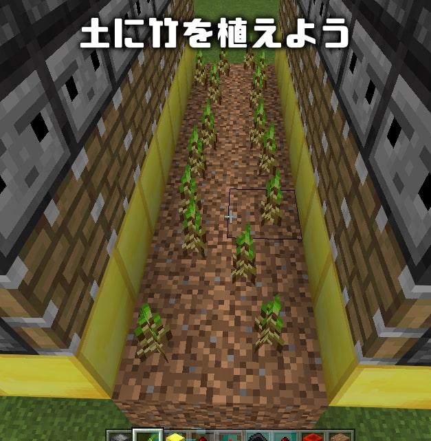 マイクラ 竹 栽培