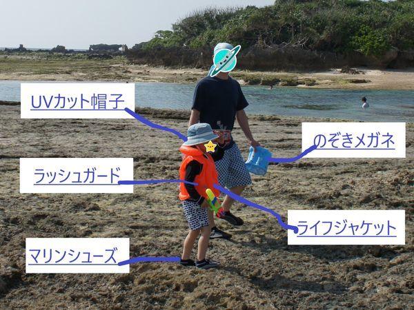 子供 磯遊び 装備品