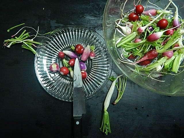 ラディッシュのサラダを作る