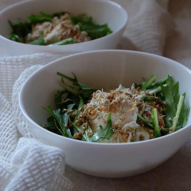 水菜と豆腐のメチャ簡単サラダ