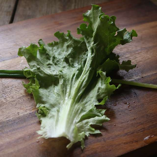 ①の細ネギの上にレタスの葉を裏にして置く
