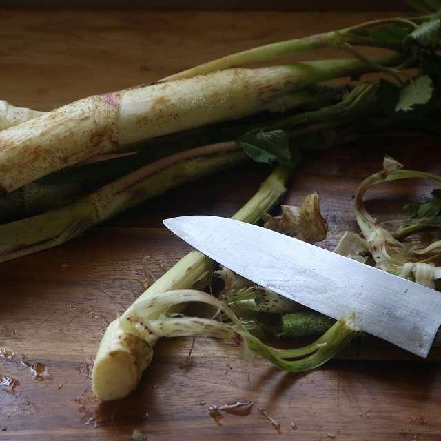 うどの葉や細い茎を取り除き、皮を剥く