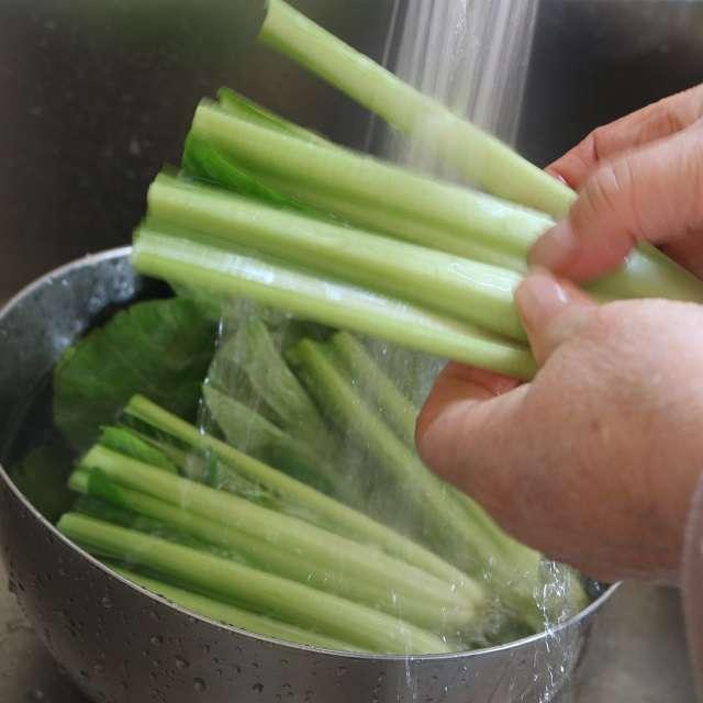 小松菜を葉と根元部分に切り離す