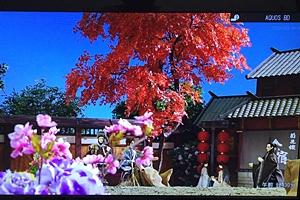 f:id:homuhomuHiro:20160717122503j:plain