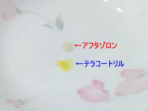 f:id:homuhomuHiro:20160730161211j:plain