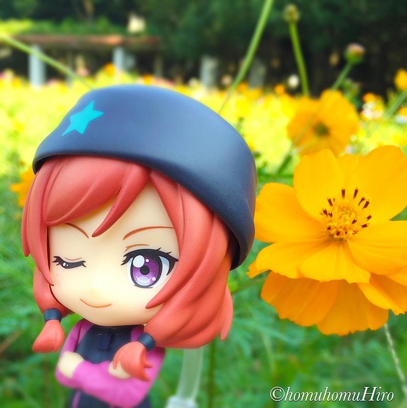 f:id:homuhomuHiro:20161023002613j:plain