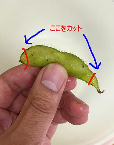 f:id:homuhomuHiro:20161023225626p:plain