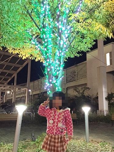 f:id:homuhomuHiro:20161130224959j:plain