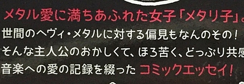 f:id:homuhomuHiro:20170711231036j:plain