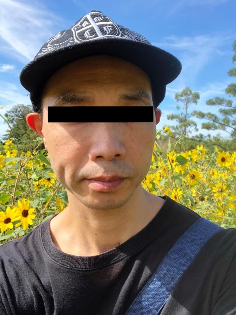 f:id:homuhomuHiro:20180819222652j:plain