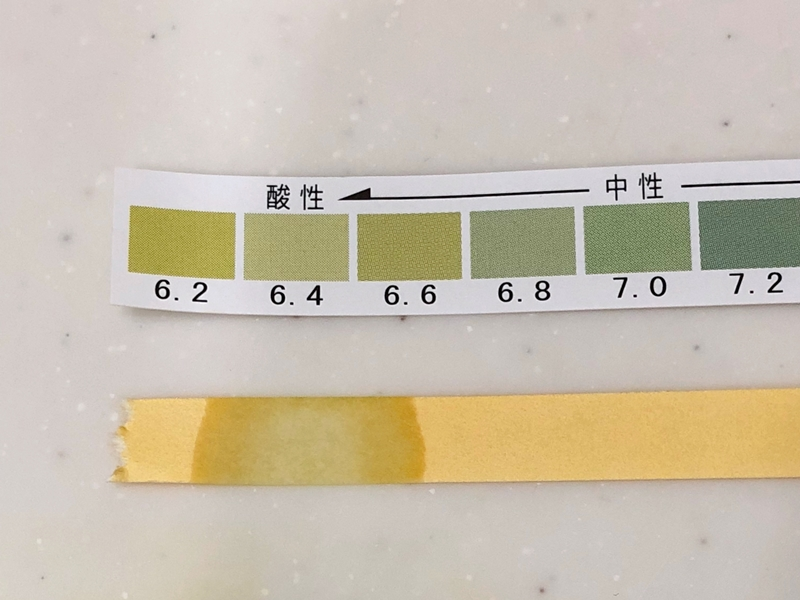 f:id:homuhomuHiro:20180827215827j:plain