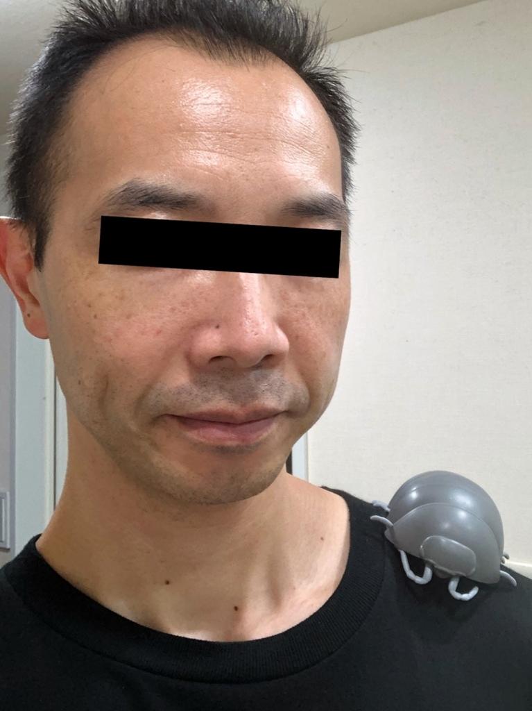 f:id:homuhomuHiro:20180828225842j:plain