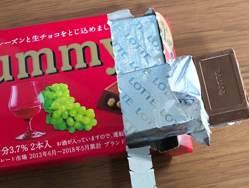 f:id:homuhomuHiro:20190104215206j:plain