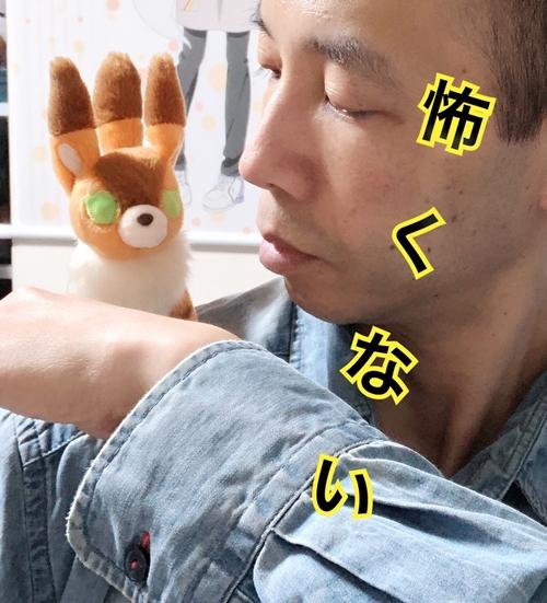 f:id:homuhomuHiro:20191215224137j:plain