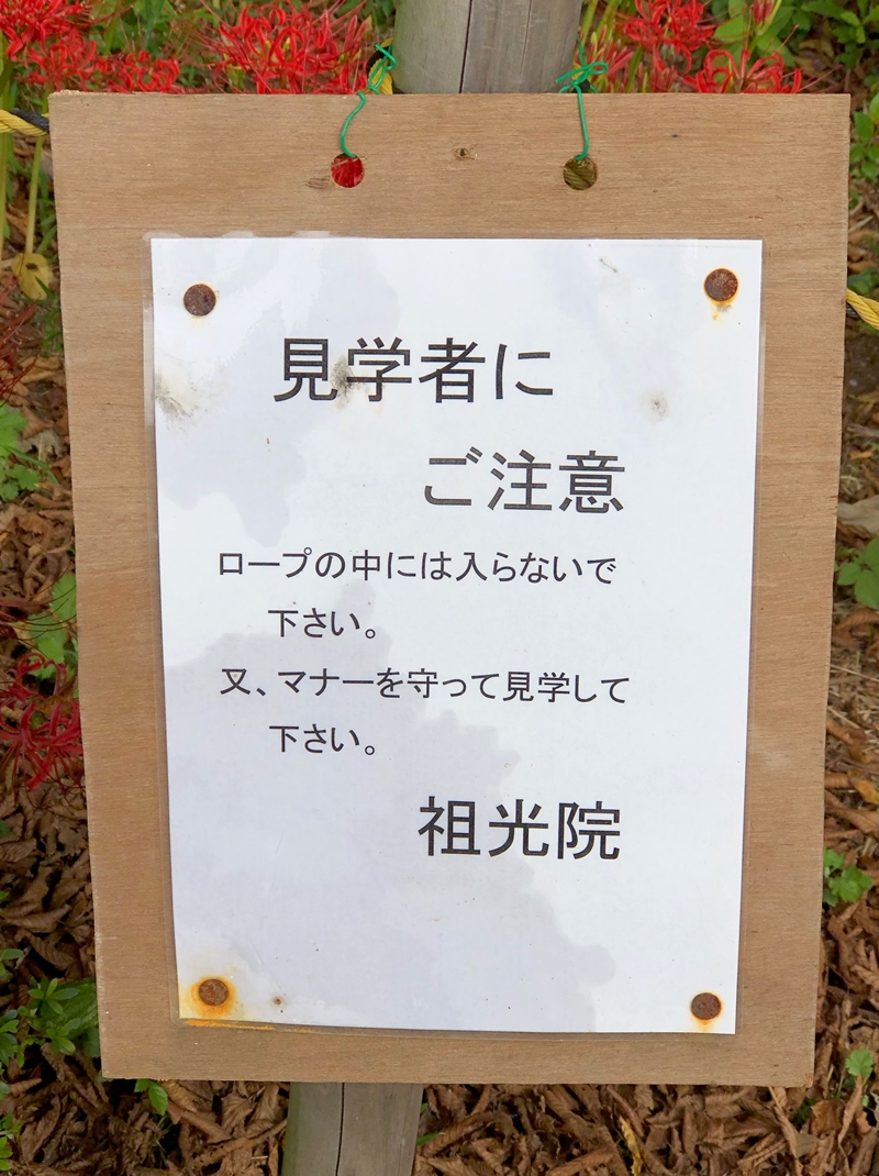 f:id:homuhomuHiro:20200929230536j:plain