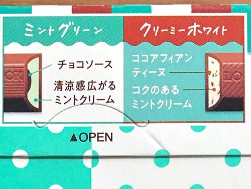 f:id:homuhomuHiro:20210618221710j:plain