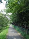 f:id:honda-jimusyo:20050806105825j:plain