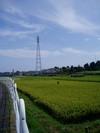 f:id:honda-jimusyo:20050903120924j:plain