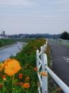 f:id:honda-jimusyo:20050903121555j:plain