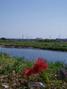 f:id:honda-jimusyo:20051002113515j:plain