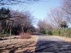 f:id:honda-jimusyo:20060115101401j:plain