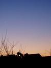 f:id:honda-jimusyo:20060128045736j:plain