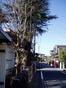 f:id:honda-jimusyo:20060128125028j:plain