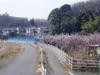 f:id:honda-jimusyo:20060311081435j:plain